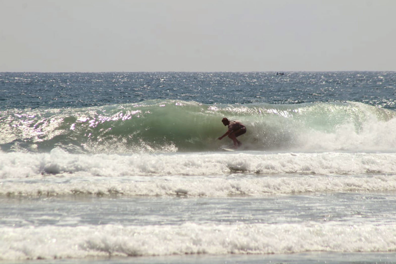 Las Palmeras Surf Camp