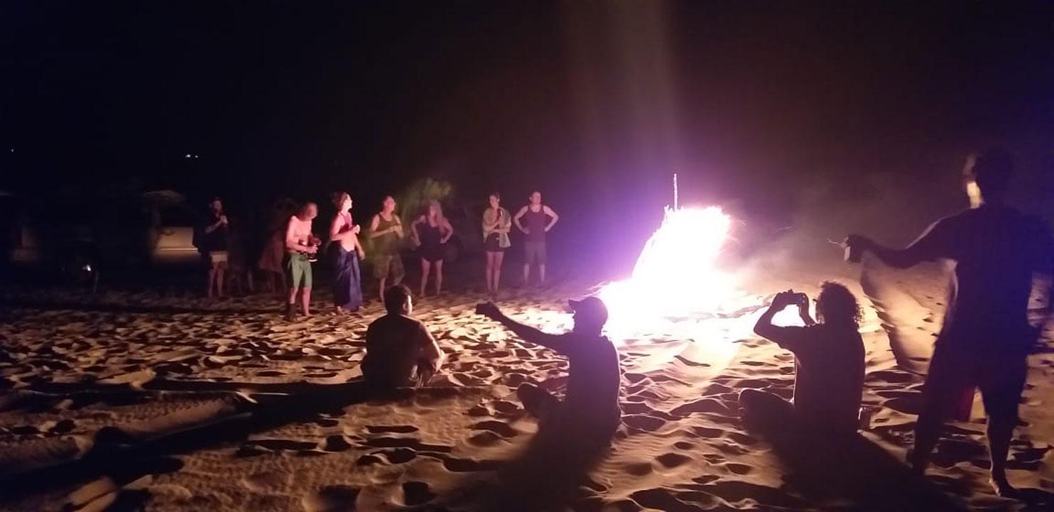 Las Palmeras Surf Camp - April 2019
