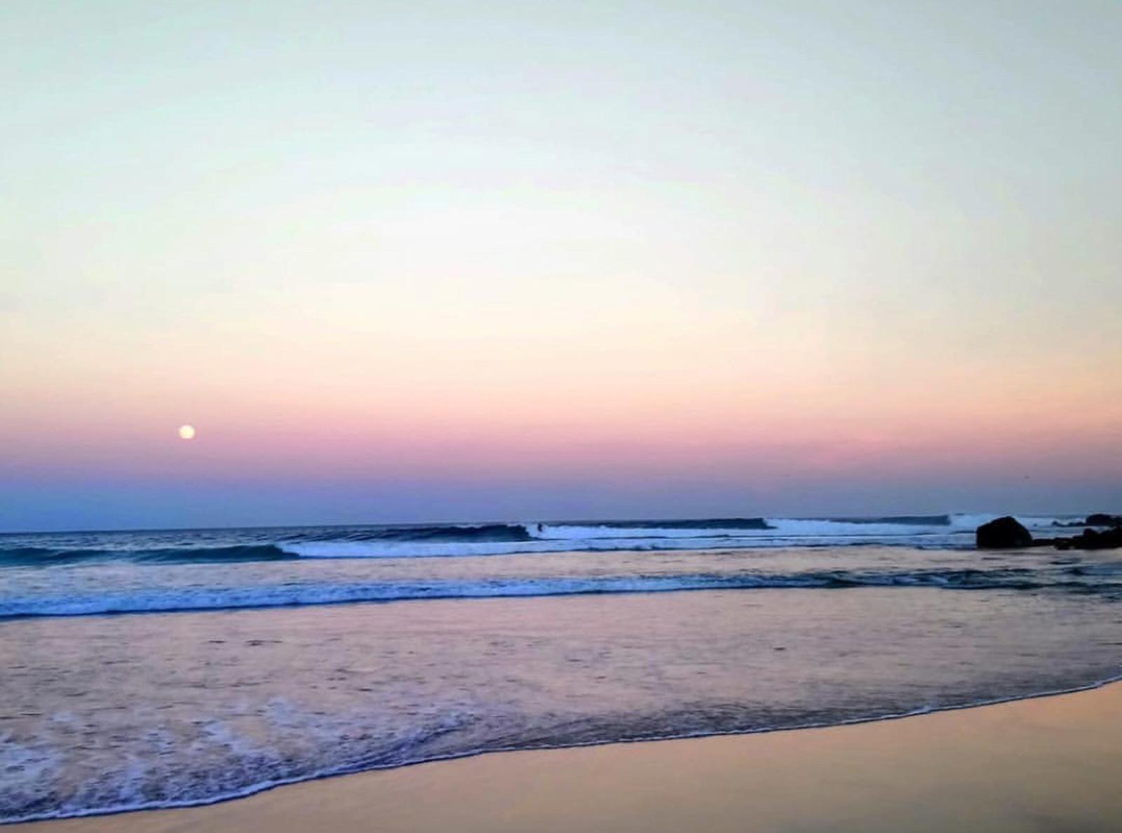 Surf Las Palmeras | November Swell Alert