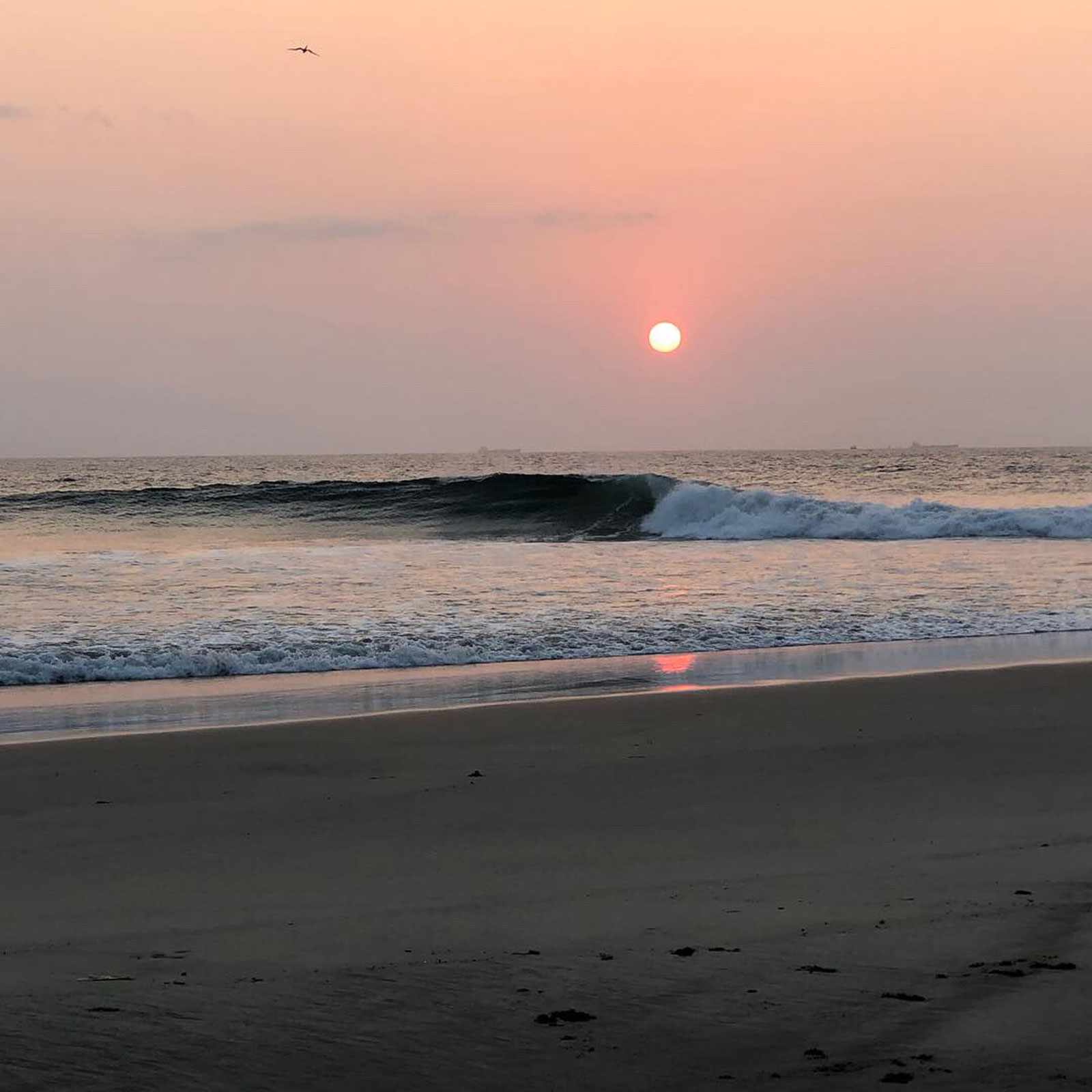 Las Palmeras Surf Camp, Salina Cruz, Oaxaca, Mexico, April 2019