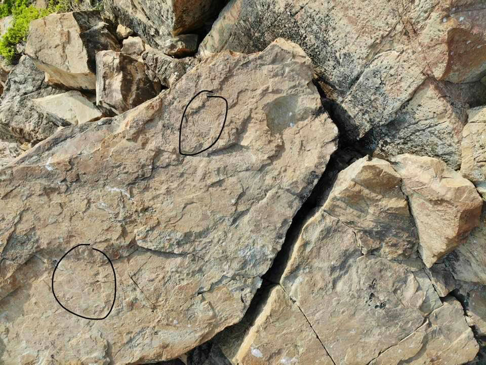 Petroglyphs found at Punta Conejo, Salina Cruz, Oaxaca, Mexico