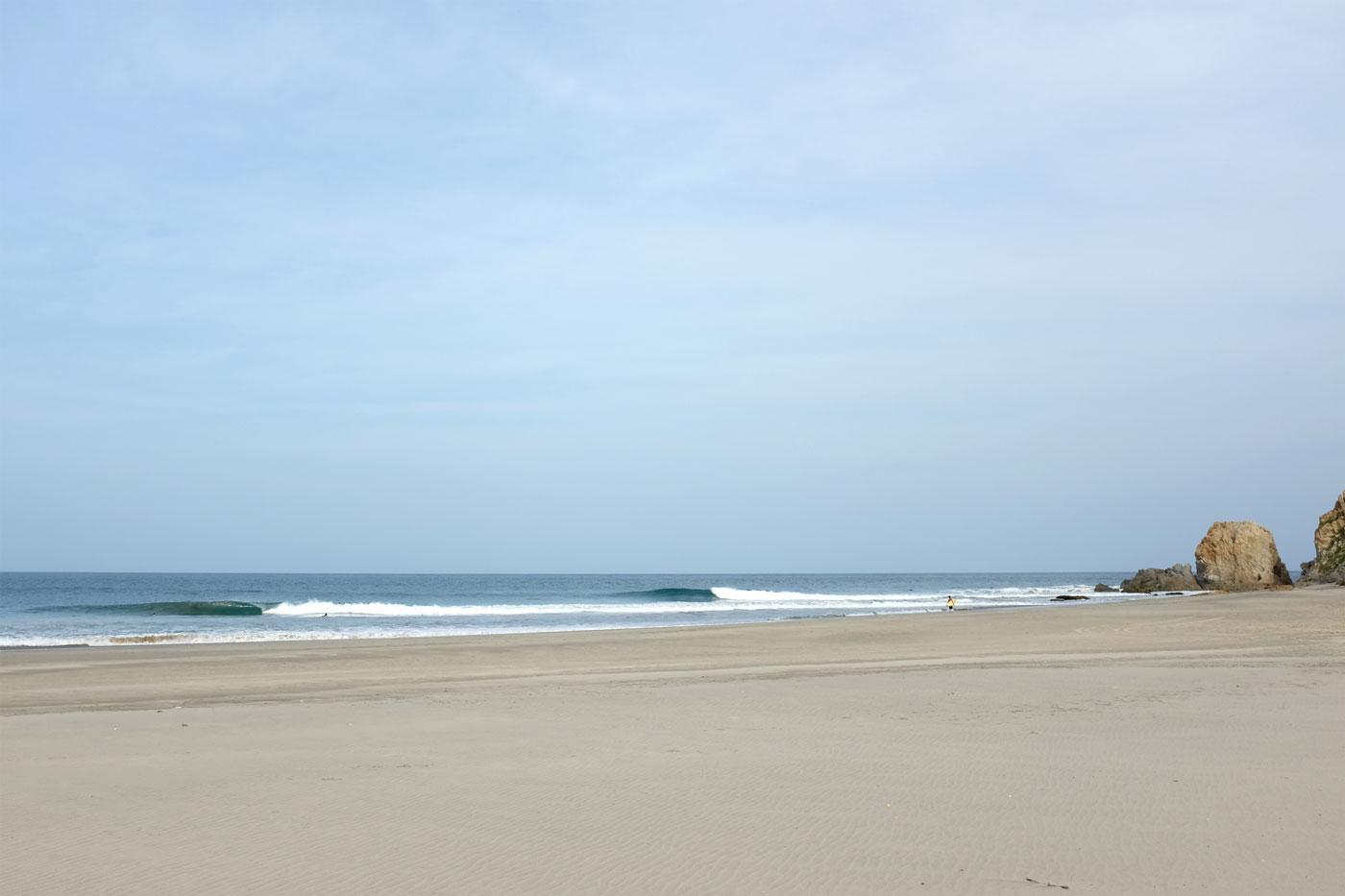 surflaspalmeras_matt_lineup-01